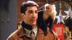 Aapje uit 'Friends' acteert vandaag nog steeds