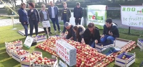 'Ons Plekske' in Vinkel gaat voor wereldrecord appel stapelen