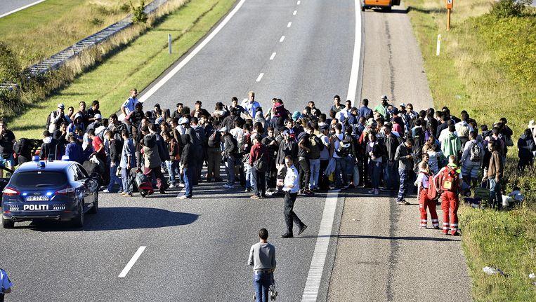 Een groep asielzoekers op een snelweg in Denemarken, op weg naar Zweden om asiel aan te vragen. Beeld AP