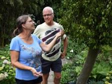TuinAward: landschapstuin van Marjo en Anneke: 'Wij doen graag samen de tuin'
