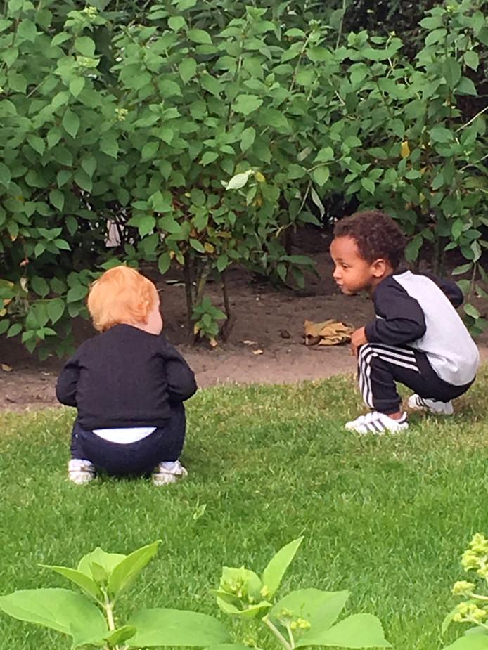 Zie jij hem? Lotte (1,5) en James (2) zoeken bij opa en oma naar een konijntje onder de heg.