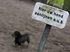 Loslopende honden gaan onverbiddelijk op de bon in natuurgebieden bij Steenwijk