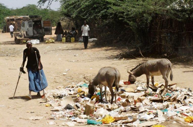 De woestijnachtige omgeving van de Keniaanse vluchtelingenkampen van Dabaab, zo?n tachtig kilometer van de Somalische grens. (FOTO REUTERS ) Beeld REUTERS
