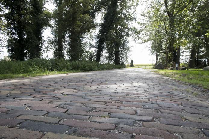 De oude waaltjes aan de Harberinksweg.