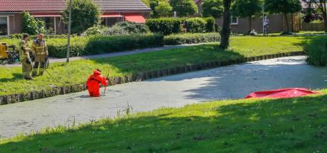 Man (80) overleden na val in Zwijndrechtse sloot: 'Zó zielig'