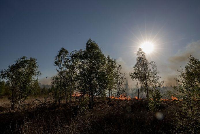 Deurne, 21 april 2020,  de inzet van 4 Chinooks (eentje is links tussen de bomen net zichtbaar) bij de Peelbrand