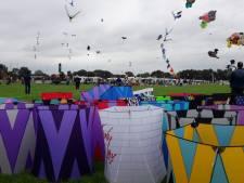 Kameraadschappelijk hangen de vliegers in de Rijsbergse lucht