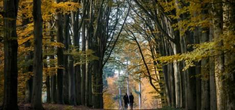 Landgoed Prattenburg bij Rhenen wordt mogelijk natuurbegraafplaats