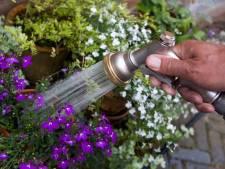 Waterbedrijf waarschuwt voor slap straaltje uit de kraan