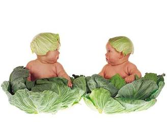Dit zijn de beroemde baby's van Anne Geddes 20 jaar later