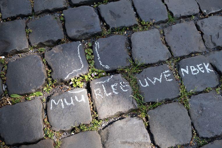 Muurleeuwenbek, groeiend tussen de straatstenen in Leiden. Beeld Sabine Van Wechem