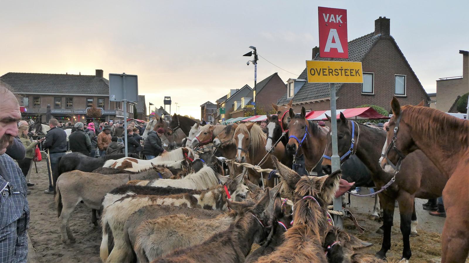 De paardenmarkt in Hedel.