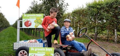 'Groenteboys' Niek (9) en Thom (9) hebben een eigen bedrijfje: ze verkopen groente vanuit hun skelter