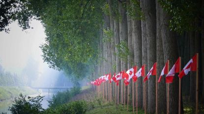 Vandalen beschadigen pas ingehuldigd kunstwerk langs Leopoldsvaart