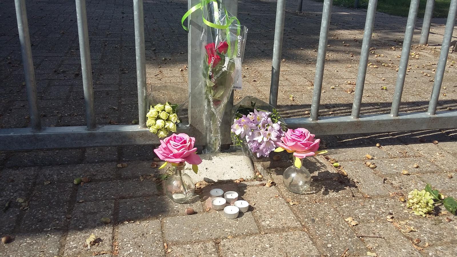 Bloemen bij De Boshoek.