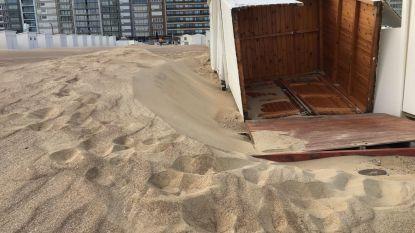 Ergste stormschade vóór zomerseizoen sinds 1990: strand van Knokke-Heist wordt met man en macht vlak gemaakt