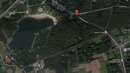 Provincie koopt bos van 10 hectare vlakbij De Ster