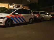 Wietkwekerij bij toeval ontdekt in Hengelo, een persoon aangehouden