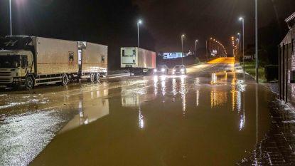 Nog maar pas heraangelegd, maar Ninoofsesteenweg bij eerste onweer al onder water
