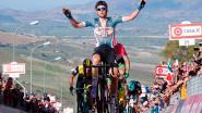 Belgisch feestje in Giro: indrukwekkende Wellens triomfeert op venijnige slothelling, Dennis blijft leider