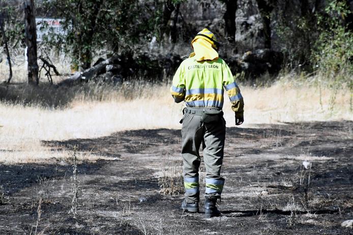 Een Spaanse brandweerman loopt door een afgebrand stuk bos.