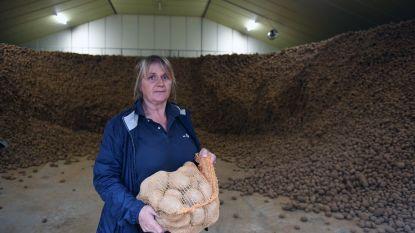 Bertem natuur start met aardappelen drive-in