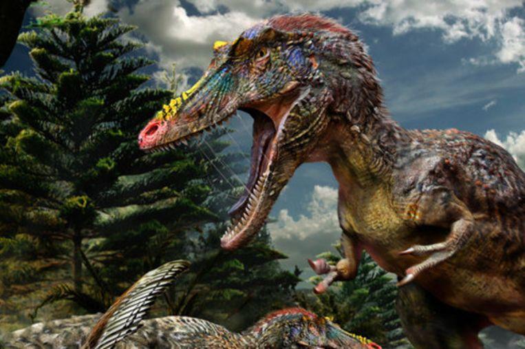 Pinokkio rex. Beeld Nature
