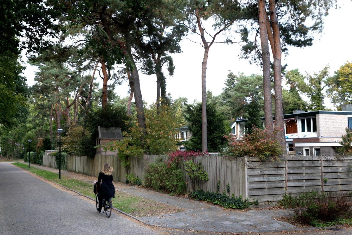 Schuttingen aan de Plesmanlaan in Son en Breugel. De gemeente wil geleidelijk af van de blinde, twee meter hoge wanden, grenzend aan de openbare weg.