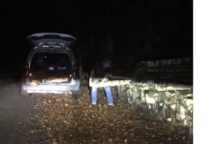 Een Soester werd gepakt terwijl hij berkenstammen in Soest stal.