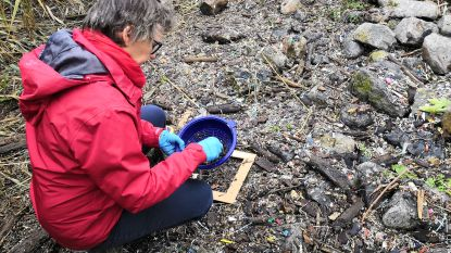 Ga mee op jacht naar plastickeutels tijdens de 'Great Global Nurdle Hunt'