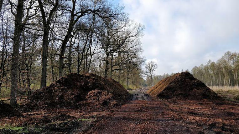 Versnipperd hout op de Veluwe, bestemd voor de biomassacentrale. Beeld Patrick Jansen