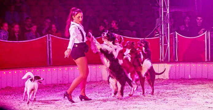 De hondenact van Nadja Scholl leverde veel applaus op tijdens de show in Uden.