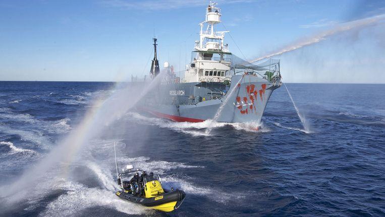 Sea Shepherd en de Japanse walvisjagers bij Antarctica. Beeld ap