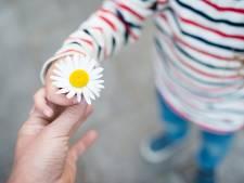 Te weinig pleegouders in Almelo: 'Niet elk gezin is geschikt'