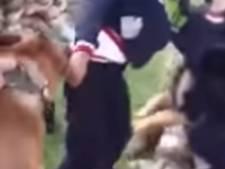 Aangevallen Palestijn daagt Nederlandse hondentrainers
