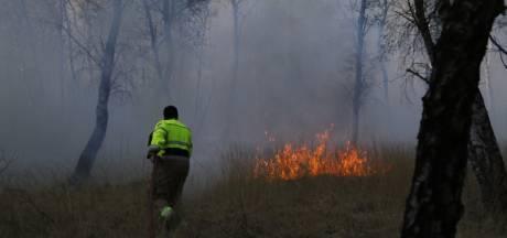 Bosbrand in Boxmeer bij Sportlaan onder controle