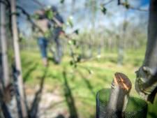 Politie stopt met onderzoek naar jarenlange agriterreur in Maas en Waal
