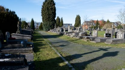 Begraafplaats Mechelsesteenweg wordt groener