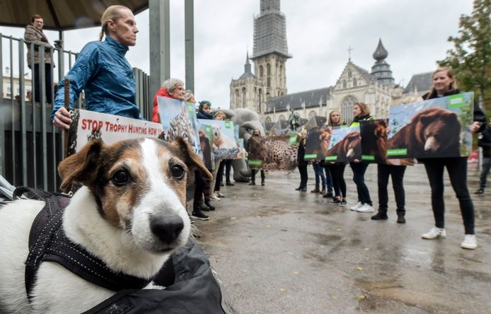 Demonstratie van Animal Rights tegen de trofeejacht.