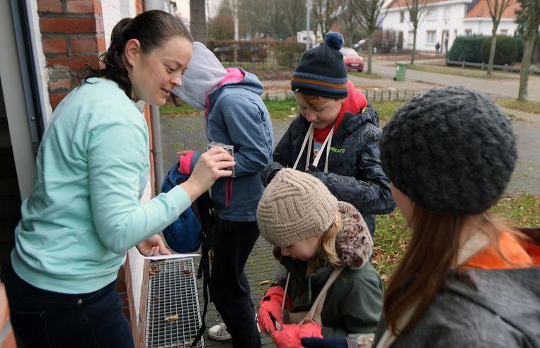 Kinderen op pad in Herentals.