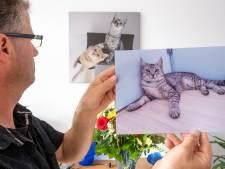 Jonge kat in Ritthem sterft door metalen strop: 'Levi is gewoon vermoord en dat accepteer ik niet'