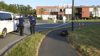 Dolle achtervolging en schot door 'paniekreactie': Chauffeur riskeert jaar cel voor gewapende weerspannigheid