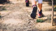 Sportdienst houdt wandelzoektocht