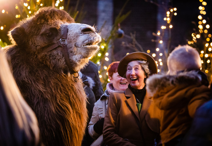 De levende kerststal tijdens de vorige editie.