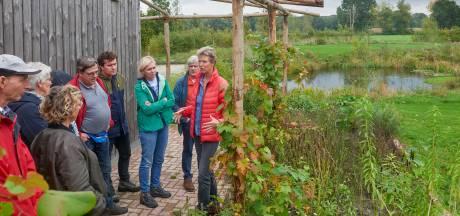 Een privébos als mega-moestuin:'Ik wil aan boeren laten zien dat het anders kan'