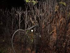 Coniferenhaag in brand in Oudheusden, bewoner hoorde knal