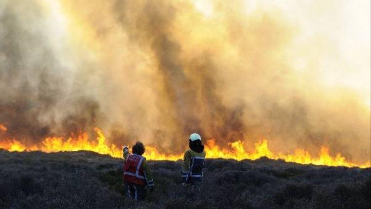 Brandweermannen bekijken de duinbrand in het duingebied tussen Schoorl en Bergen aan Zee tijdens een eerdere brand, op 14 april dit jaar. ( ANP) Beeld