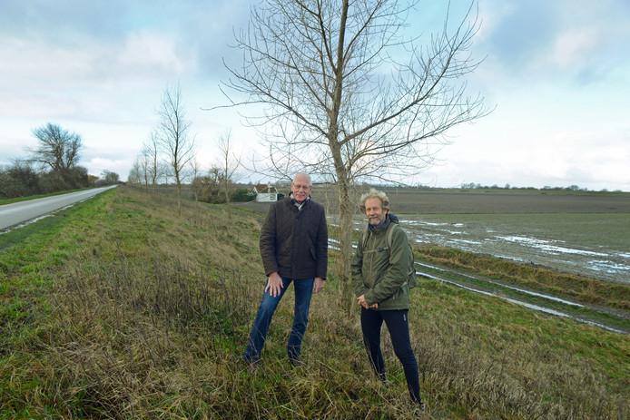 John Jansen (l) en Arjan de Hulster bij de zeven jaar oude aanplant op de Kijkuitsedijk bij Zonnemaire. Dit soort dijkjes en hoeken van boerenakkers zouden volgens hen veel meer moeten worden gebruikt om bomen en struiken neer te zetten.