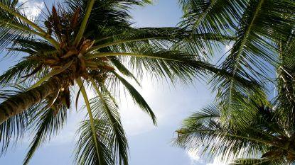 Kies uw reisbestemming op het komende Vakantiesalon