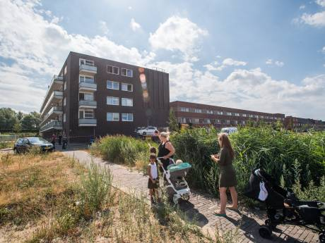 Slechts één melding over flat Daphnestraat